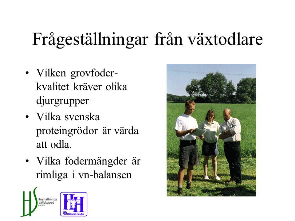 Frågeställningar från växtodlare Vilken grovfoder- kvalitet kräver olika djurgrupper Vilka svenska proteingrödor är värda att odla.