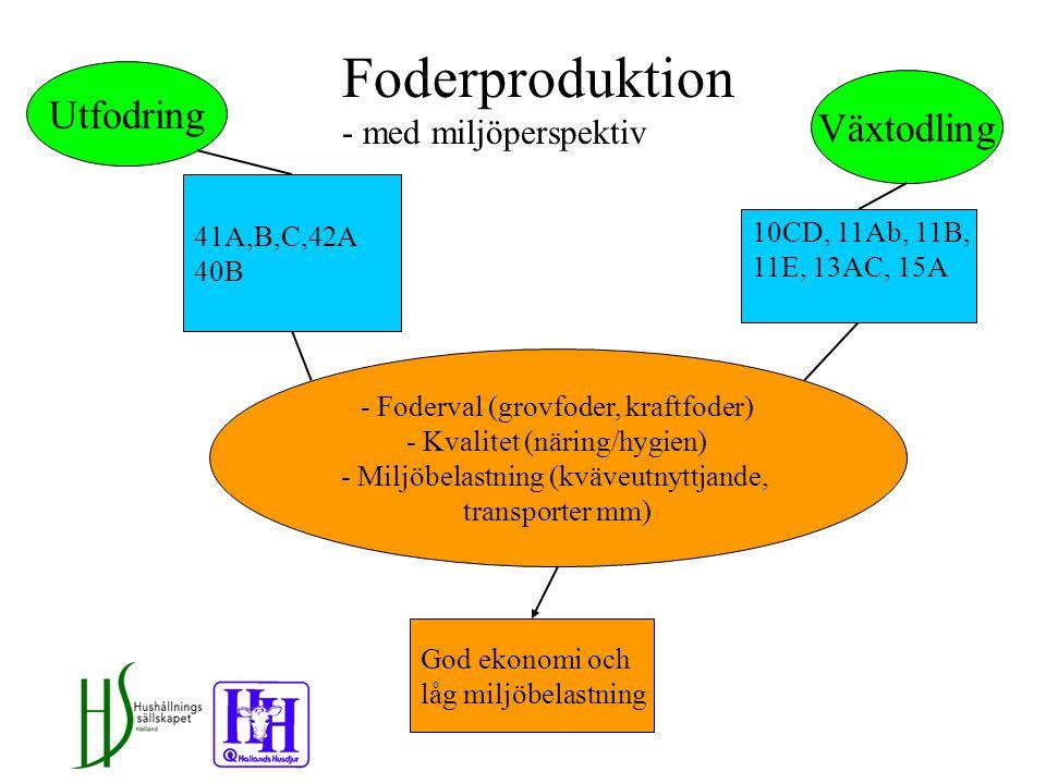 Foderproduktion Utfodring Växtodling God ekonomi och låg miljöbelastning 41A,B,C,42A 40B 10CD, 11Ab, 11B, 11E, 13AC, 15A - Foderval (grovfoder, kraftfoder) - Kvalitet (näring/hygien) - Miljöbelastning (kväveutnyttjande, transporter mm) Foderproduktion - med miljöperspektiv
