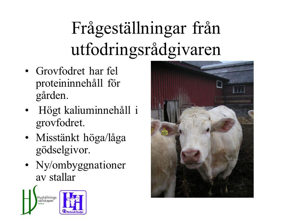 Frågeställningar från utfodringsrådgivaren Grovfodret har fel proteininnehåll för gården.