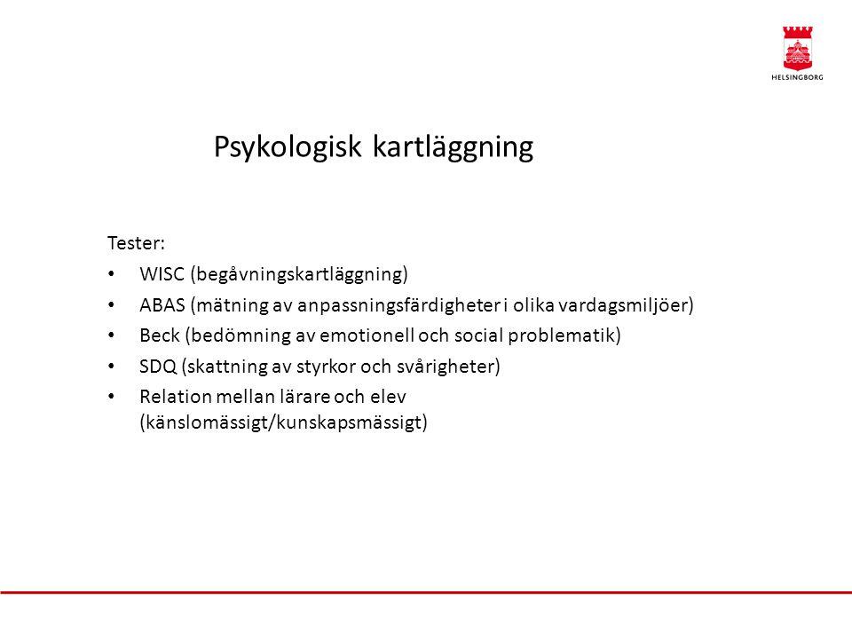Psykologisk kartläggning Tester: WISC (begåvningskartläggning) ABAS (mätning av anpassningsfärdigheter i olika vardagsmiljöer) Beck (bedömning av emotionell och social problematik) SDQ (skattning av styrkor och svårigheter) Relation mellan lärare och elev (känslomässigt/kunskapsmässigt)
