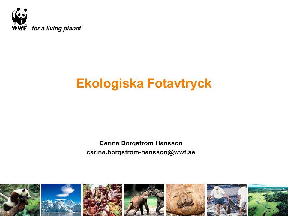 Ekologiska Fotavtryck Carina Borgström Hansson carina.borgstrom-hansson@wwf.se