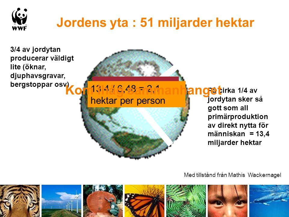 Jordens yta : 51 miljarder hektar På cirka 1/4 av jordytan sker så gott som all primärproduktion av direkt nytta för människan = 13,4 miljarder hektar