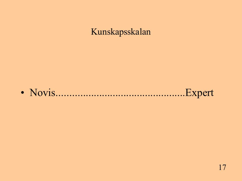 17 Kunskapsskalan Novis................................................Expert