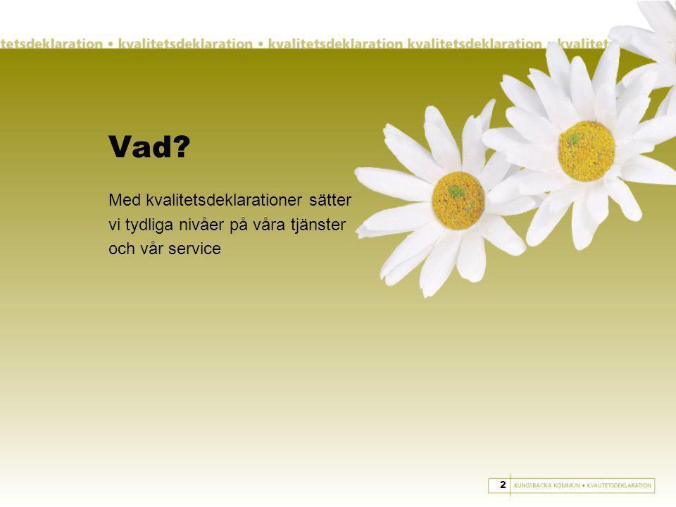 Vad Med kvalitetsdeklarationer sätter vi tydliga nivåer på våra tjänster och vår service 2