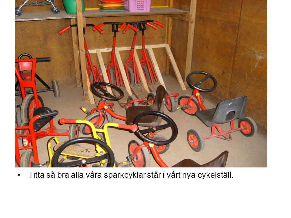 Titta så bra alla våra sparkcyklar står i vårt nya cykelställ.
