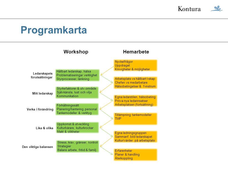 Programkarta Hållbart ledarskap, hälsa Problematiseringar verklighet Styrprocesser, länkning Arbetsplats vs hållbart l-skap Chefen vs medarbetare Häls