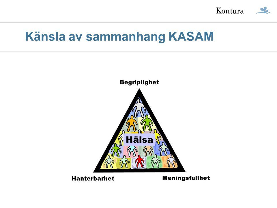 © Kontura International KASAM Kontura har fokuserat KASAM på deltagarens arbetsliv.