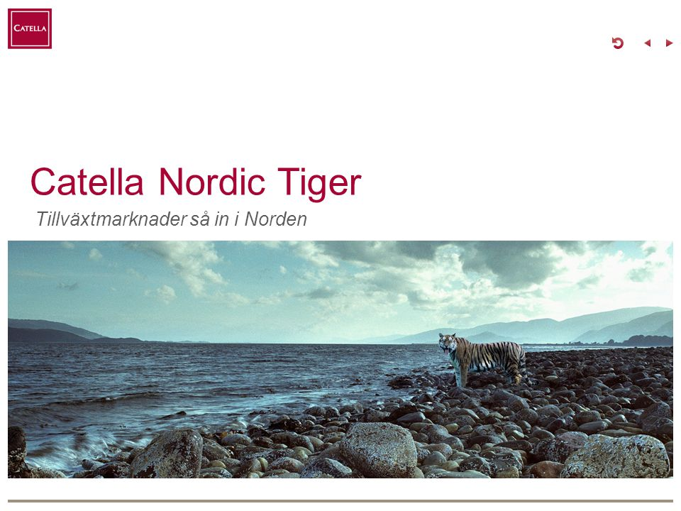 Catella Fonder Mission: Vi förvaltar våra kunders drömmarwww.catellafonder.sewww.catellafonder.se Catella Fonder tror på att ta ansvar.