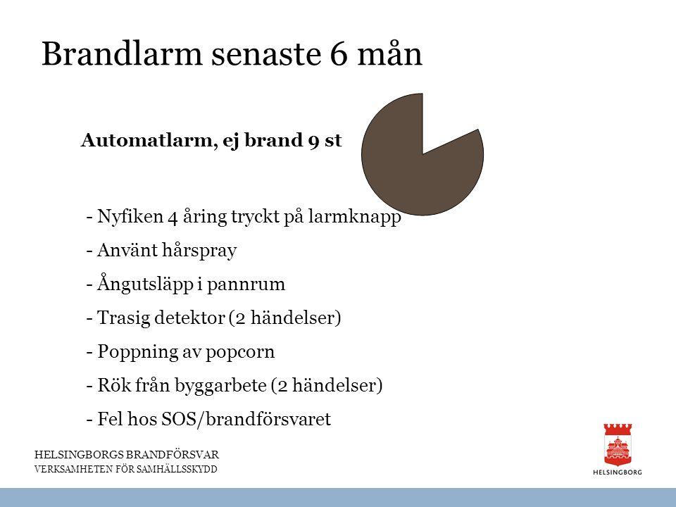 HELSINGBORGS BRANDFÖRSVAR VERKSAMHETEN FÖR SAMHÄLLSSKYDD Brandlarm senaste 6 mån Automatlarm, ej brand 9 st - Nyfiken 4 åring tryckt på larmknapp - An