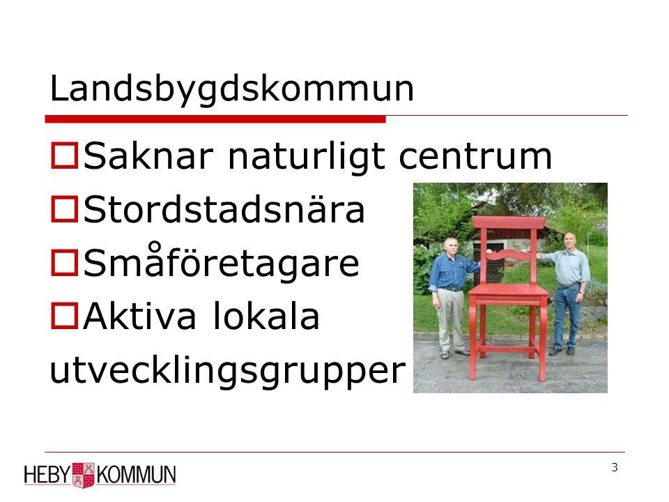 3 Landsbygdskommun  Saknar naturligt centrum  Stordstadsnära  Småföretagare  Aktiva lokala utvecklingsgrupper
