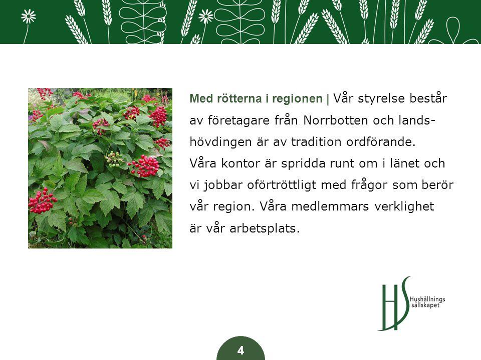 Med rötterna i regionen | Vår styrelse består av företagare från Norrbotten och lands- hövdingen är av tradition ordförande.
