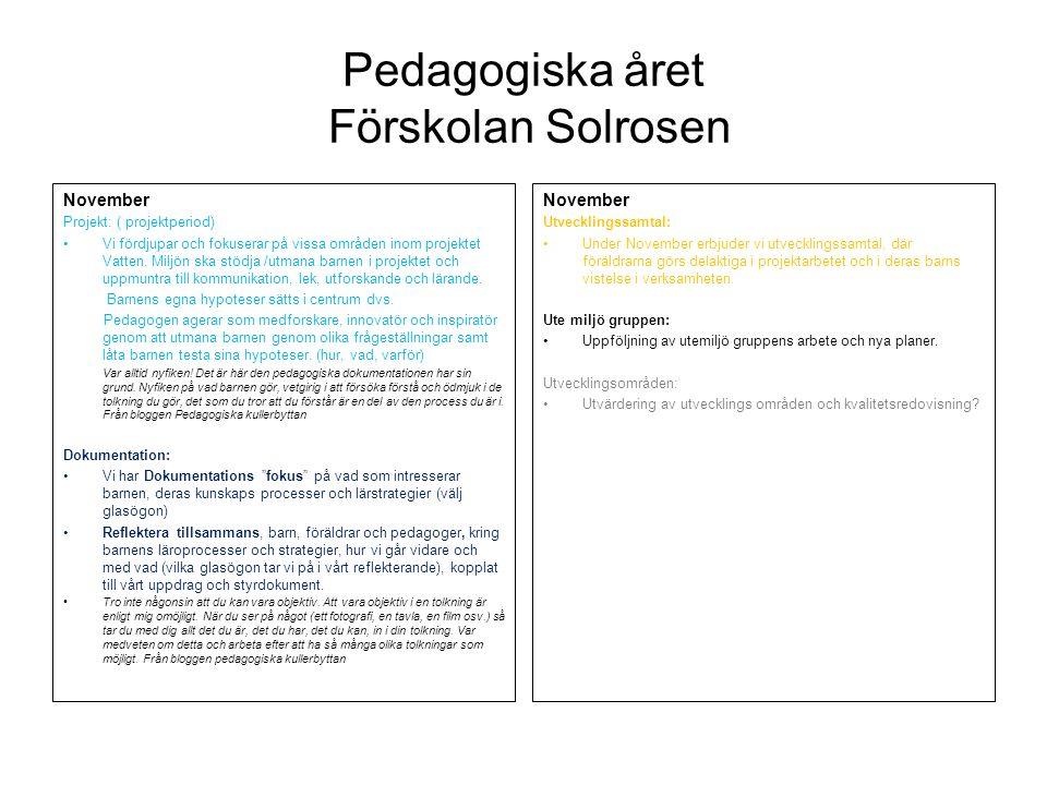 Pedagogiska året Förskolan Solrosen December Projektet ligger nere Dokumentation (summeringsperiod) : Vi utvärderar och sorterar /samlar dokumentationen.