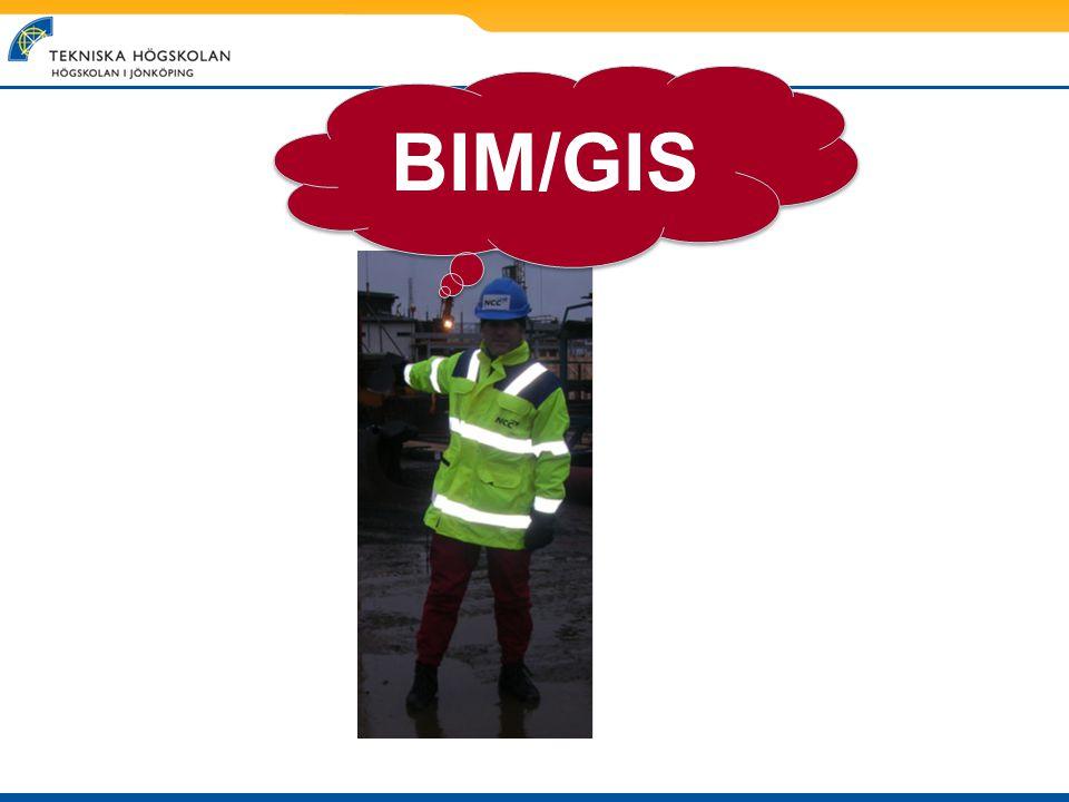 BIM/GIS