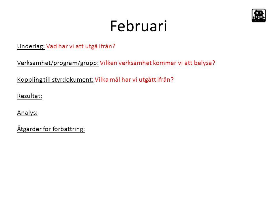 Februari Underlag: Vad har vi att utgå ifrån.