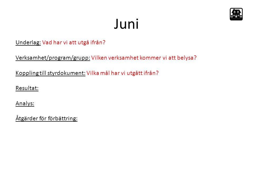 Juni Underlag: Vad har vi att utgå ifrån.