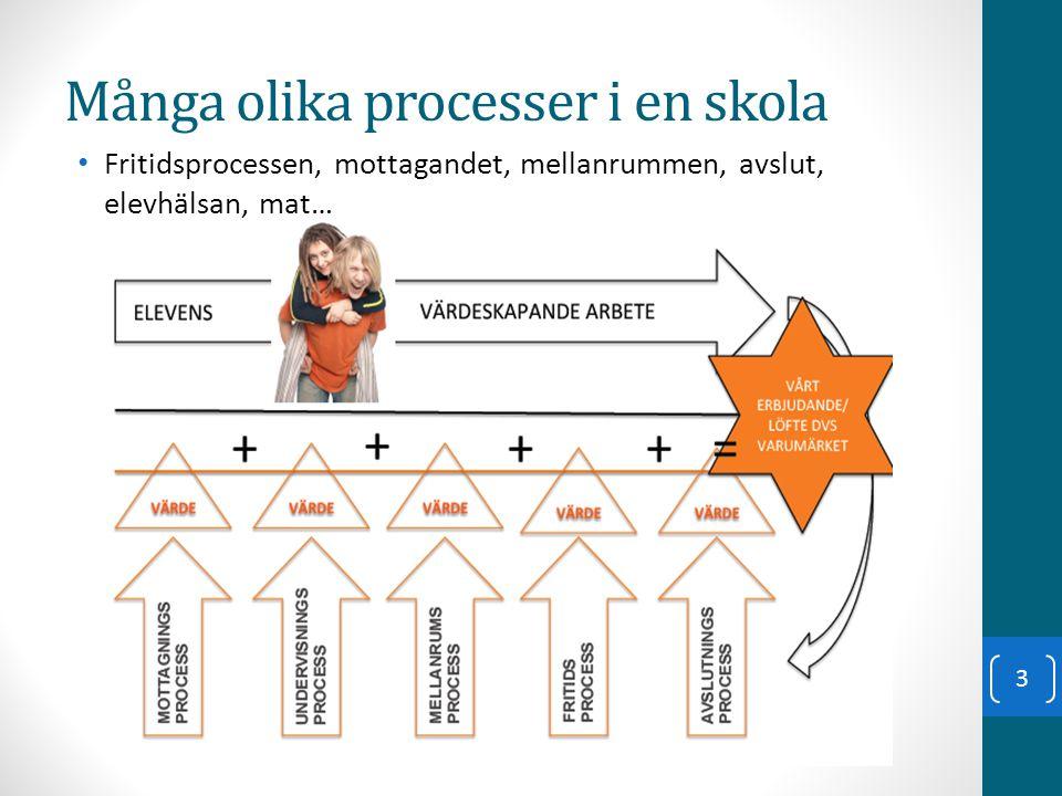 Undervisningsprocessen Utbildningen ska vila på vetenskaplig grund och beprövad erfarenhet Skollag (2010:800) 1 kap.