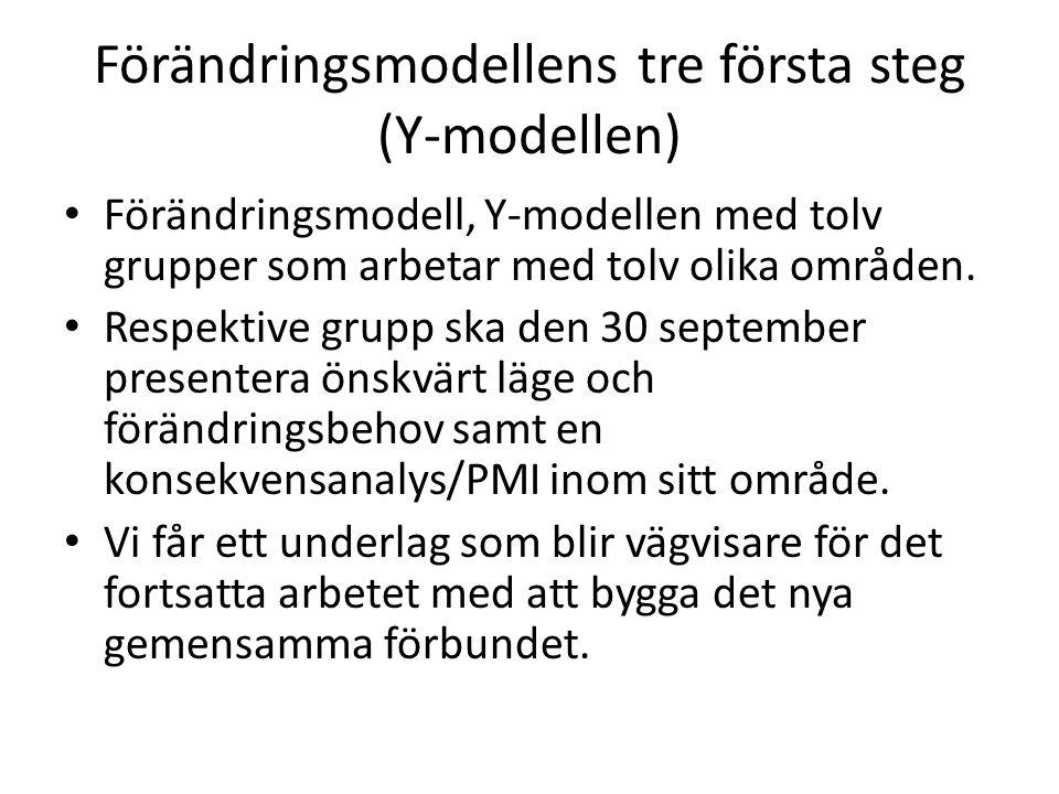 Förändringsmodellens tre första steg (Y-modellen) Förändringsmodell, Y-modellen med tolv grupper som arbetar med tolv olika områden.