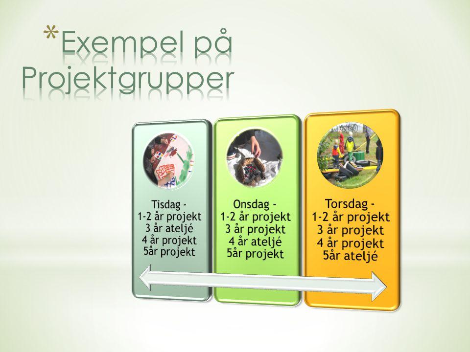 Barnet Pedagogisk observation Reflektion med barnet DokumenteraReflektion Pedagogisk dokumentation