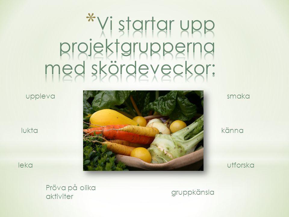 Maskerad Kulturvecka Julpysselfika (drop-in) Lucia Dalstugeloppet Höna Pöna och påsklunch Gårdsfest (vernissage) Ängsutflykt Midsommarlunch Glad sommar !