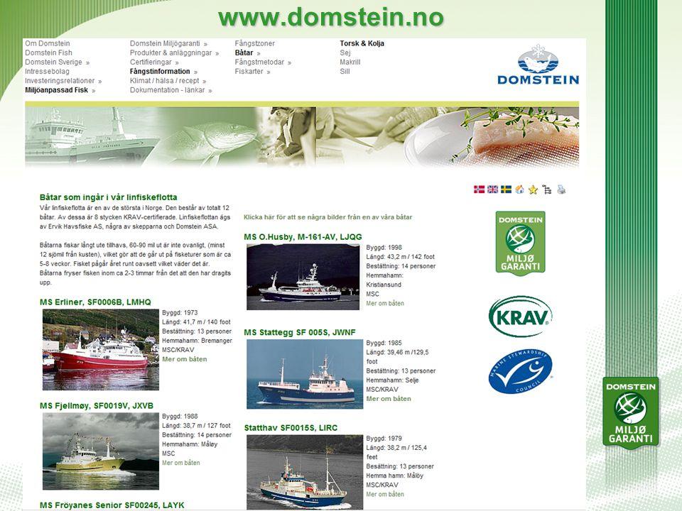 www.domstein.no