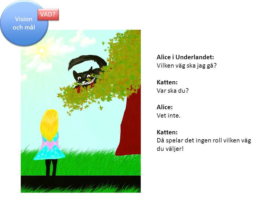 Alice i Underlandet: Vilken väg ska jag gå? Katten: Var ska du? Alice: Vet inte. Katten: Då spelar det ingen roll vilken väg du väljer! Vision och mål