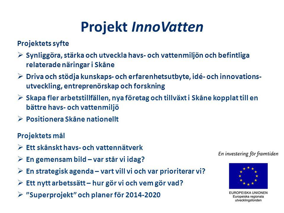 Projekt InnoVatten Projektets syfte  Synliggöra, stärka och utveckla havs- och vattenmiljön och befintliga relaterade näringar i Skåne  Driva och stödja kunskaps- och erfarenhetsutbyte, idé- och innovations- utveckling, entreprenörskap och forskning  Skapa fler arbetstillfällen, nya företag och tillväxt i Skåne kopplat till en bättre havs- och vattenmiljö  Positionera Skåne nationellt Projektets mål  Ett skånskt havs- och vattennätverk  En gemensam bild – var står vi idag.