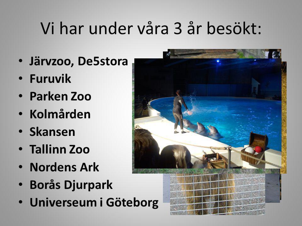 Vi har under våra 3 år besökt: Järvzoo, De5stora Furuvik Parken Zoo Kolmården Skansen Tallinn Zoo Nordens Ark Borås Djurpark Universeum i Göteborg