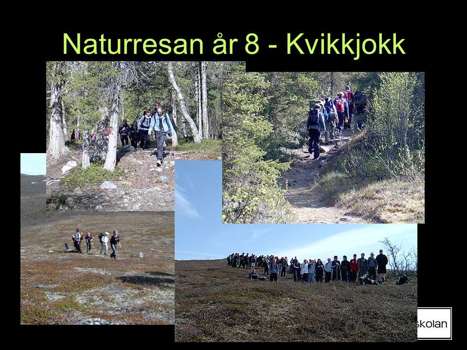 Naturresan år 8 - Kvikkjokk