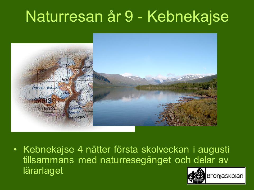 Kebnekajse 4 nätter första skolveckan i augusti tillsammans med naturresegänget och delar av lärarlaget Naturresan år 9 - Kebnekajse