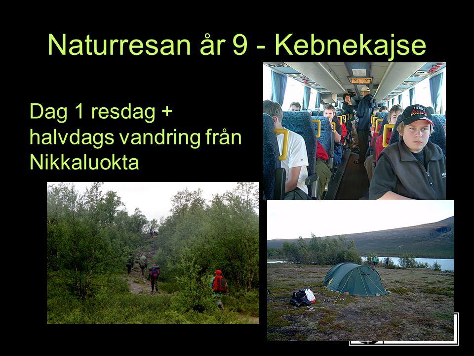 Dag 1 resdag + halvdags vandring från Nikkaluokta Naturresan år 9 - Kebnekajse
