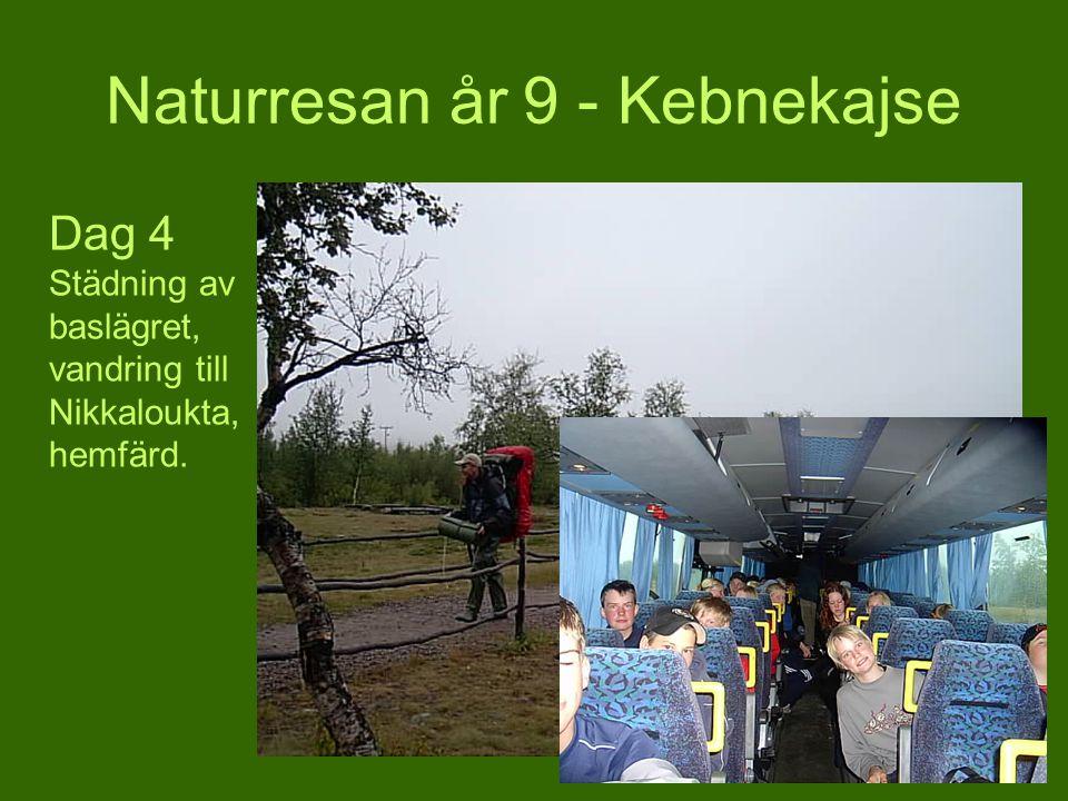 Naturresan år 9 - Kebnekajse Dag 4 Städning av baslägret, vandring till Nikkaloukta, hemfärd.