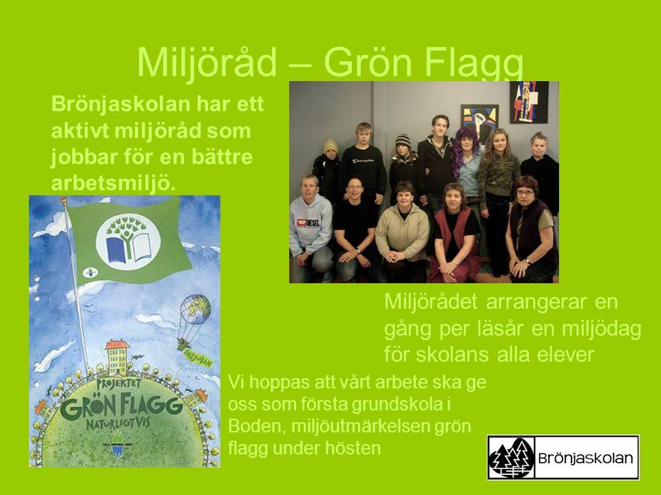 Miljöråd – Grön Flagg Vi hoppas att vårt arbete ska ge oss som första grundskola i Boden, miljöutmärkelsen grön flagg under hösten Brönjaskolan har et