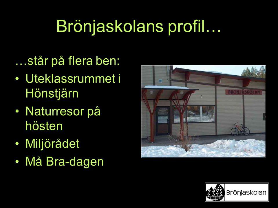 Brönjaskolans profil… …står på flera ben: Uteklassrummet i Hönstjärn Naturresor på hösten Miljörådet Må Bra-dagen