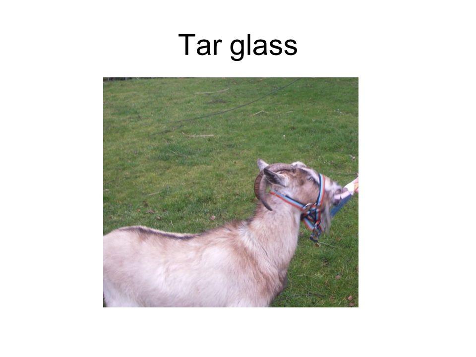 Tar glass