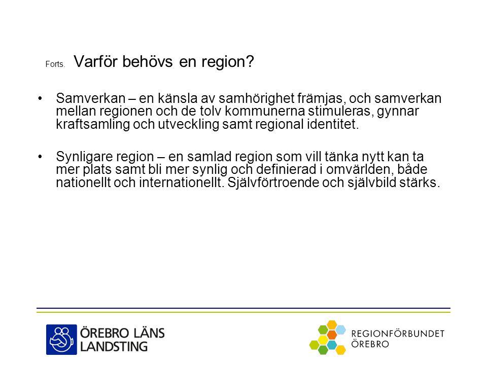 Forts.Varför behövs en region.