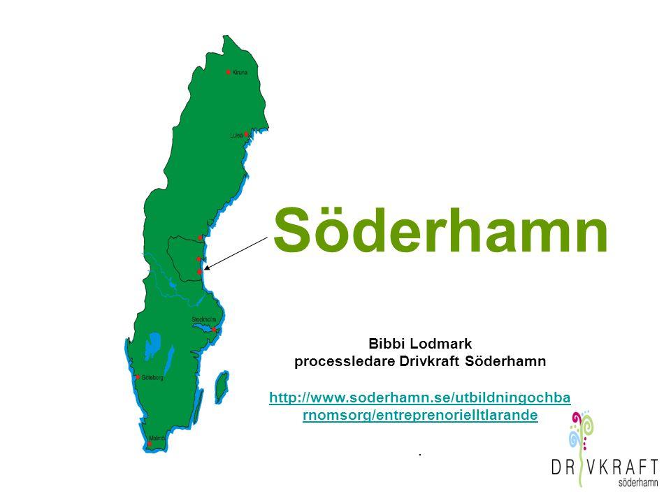 Drivkraft Söderhamn gästar ENTRIS 2.0 den 11 sept.