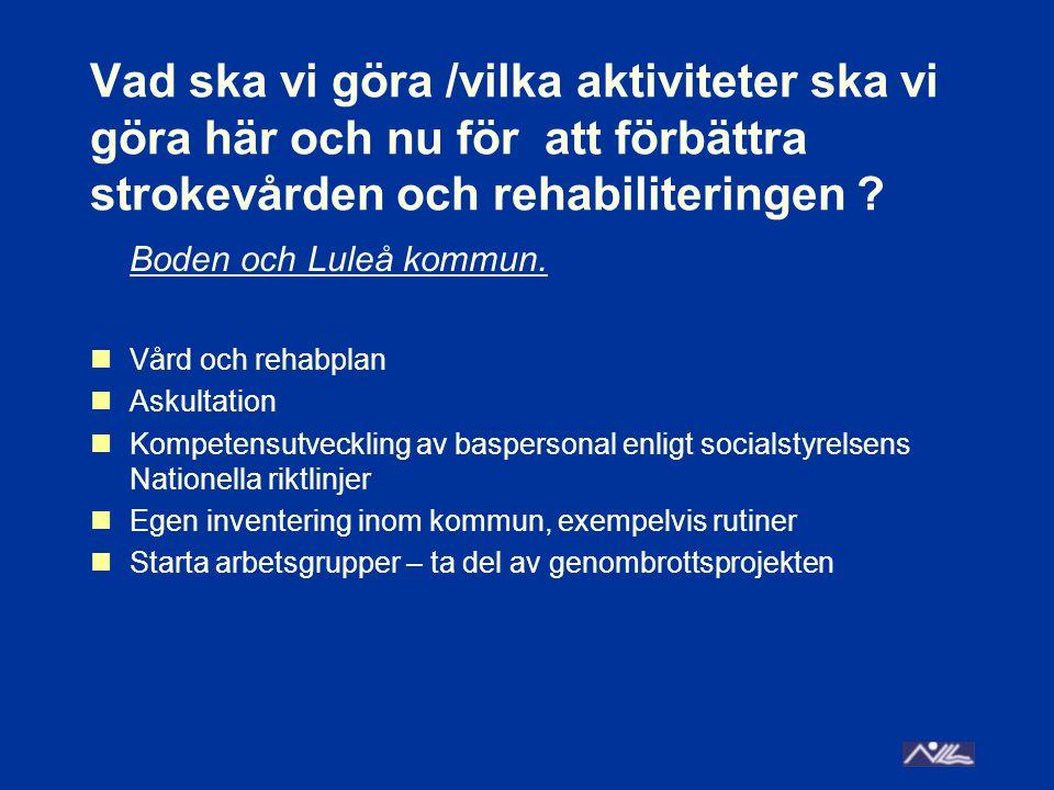Vad ska vi göra /vilka aktiviteter ska vi göra här och nu för att förbättra strokevården och rehabiliteringen ? Boden och Luleå kommun. Vård och rehab