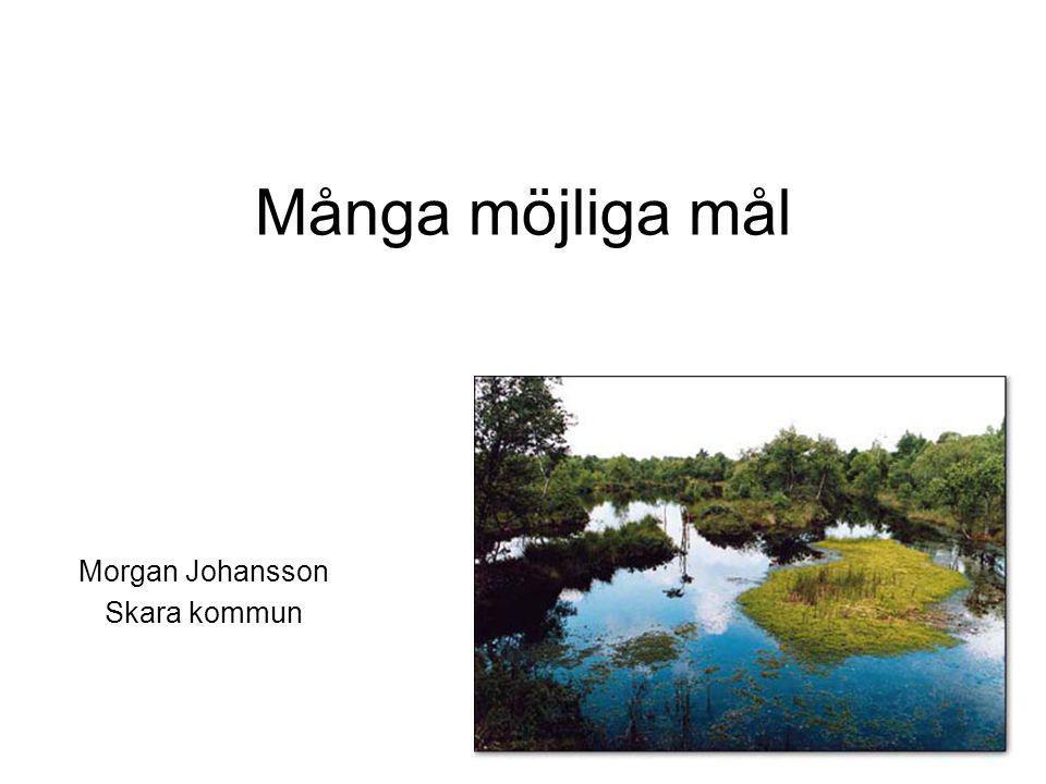 Många möjliga mål Morgan Johansson Skara kommun
