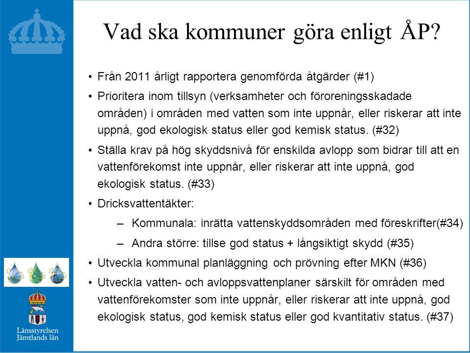 Vad ska kommuner göra enligt ÅP.