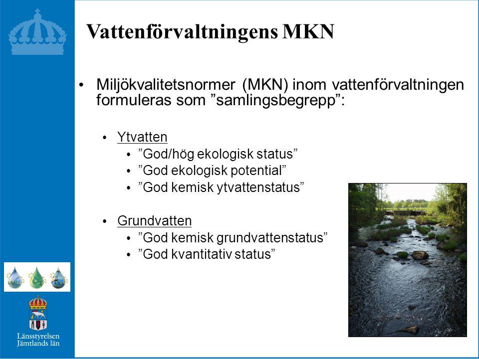 Vattenförvaltningens MKN Miljökvalitetsnormer (MKN) inom vattenförvaltningen formuleras som samlingsbegrepp : Ytvatten God/hög ekologisk status God ekologisk potential God kemisk ytvattenstatus Grundvatten God kemisk grundvattenstatus God kvantitativ status