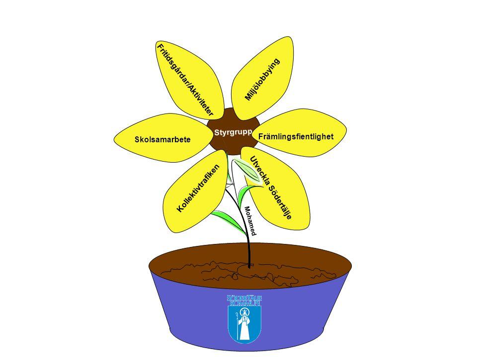 Styrgrupp Främlingsfientlighet Miljölobbying Fritidsgårdar/Aktiviteter Skolsamarbete Kollektivtrafiken Utveckla Södertälje Mohamed