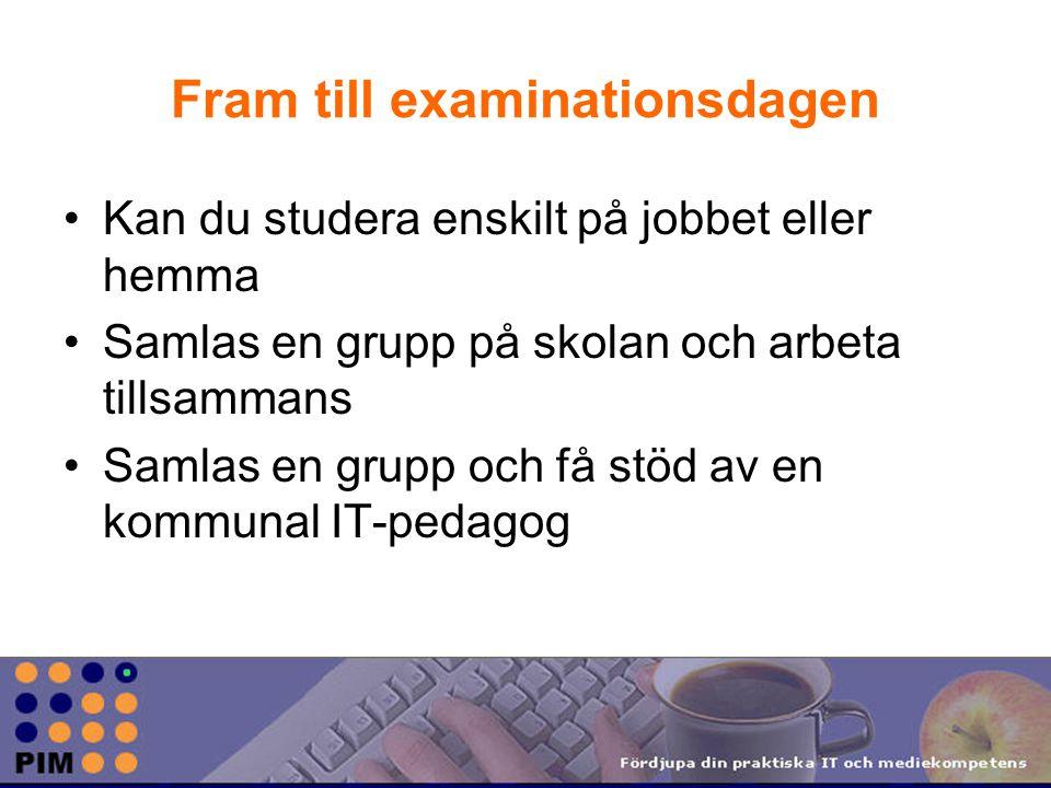 Fram till examinationsdagen Kan du studera enskilt på jobbet eller hemma Samlas en grupp på skolan och arbeta tillsammans Samlas en grupp och få stöd av en kommunal IT-pedagog
