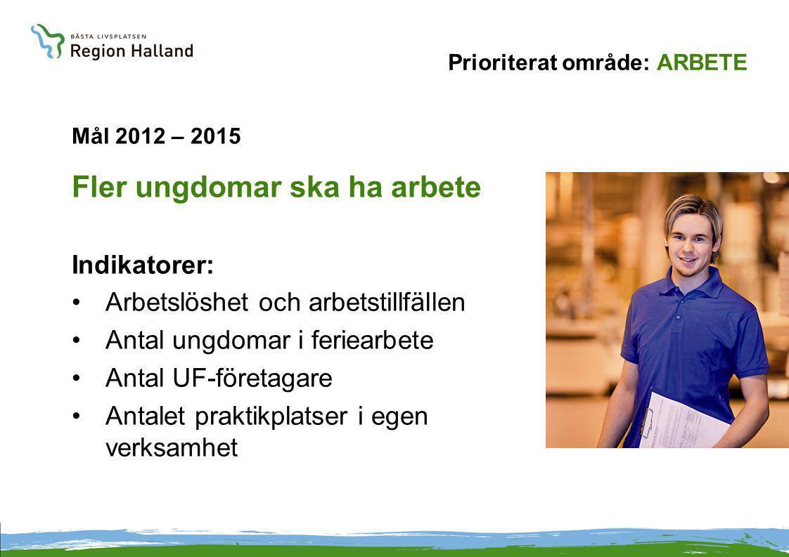 Prioriterat område: ARBETE Mål 2012 – 2015 Fler ungdomar ska ha arbete Indikatorer: Arbetslöshet och arbetstillfällen Antal ungdomar i feriearbete Antal UF-företagare Antalet praktikplatser i egen verksamhet