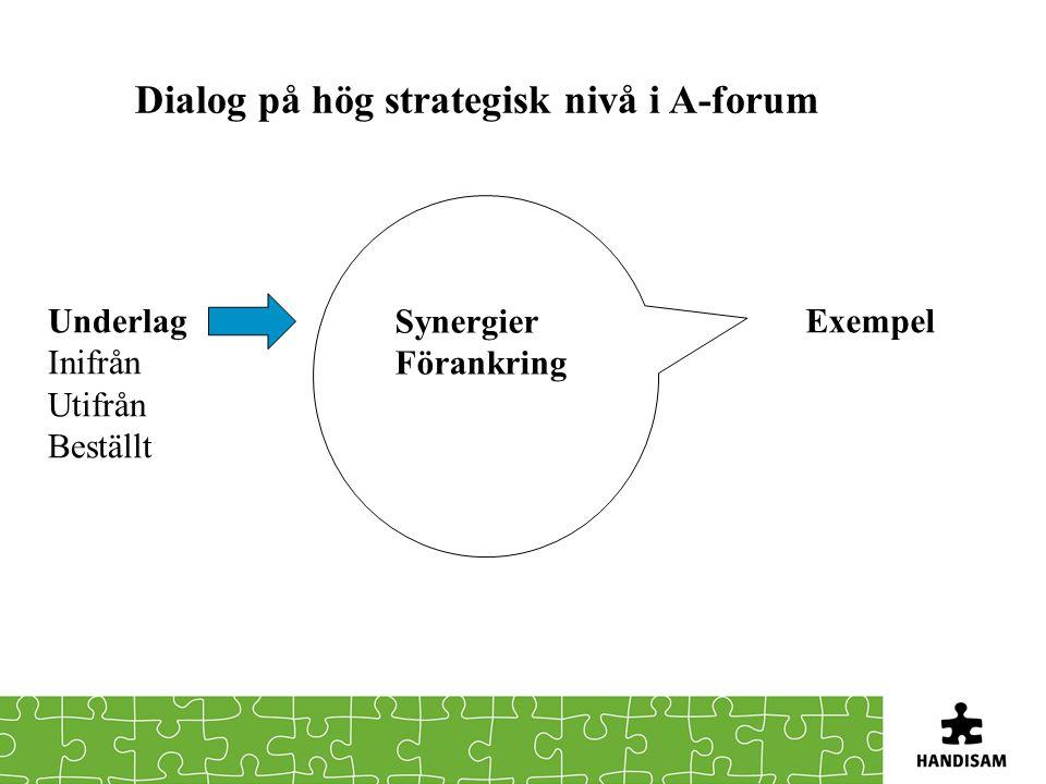 Dialog på hög strategisk nivå i A-forum Underlag Inifrån Utifrån Beställt Synergier Förankring Exempel