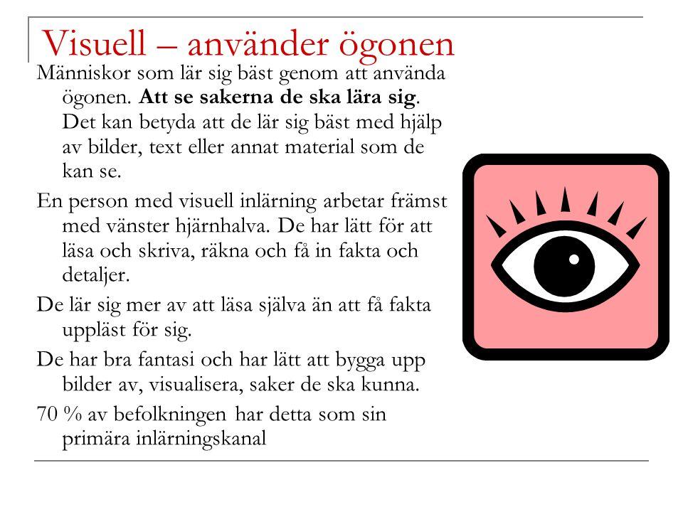 Visuell – använder ögonen Människor som lär sig bäst genom att använda ögonen. Att se sakerna de ska lära sig. Det kan betyda att de lär sig bäst med