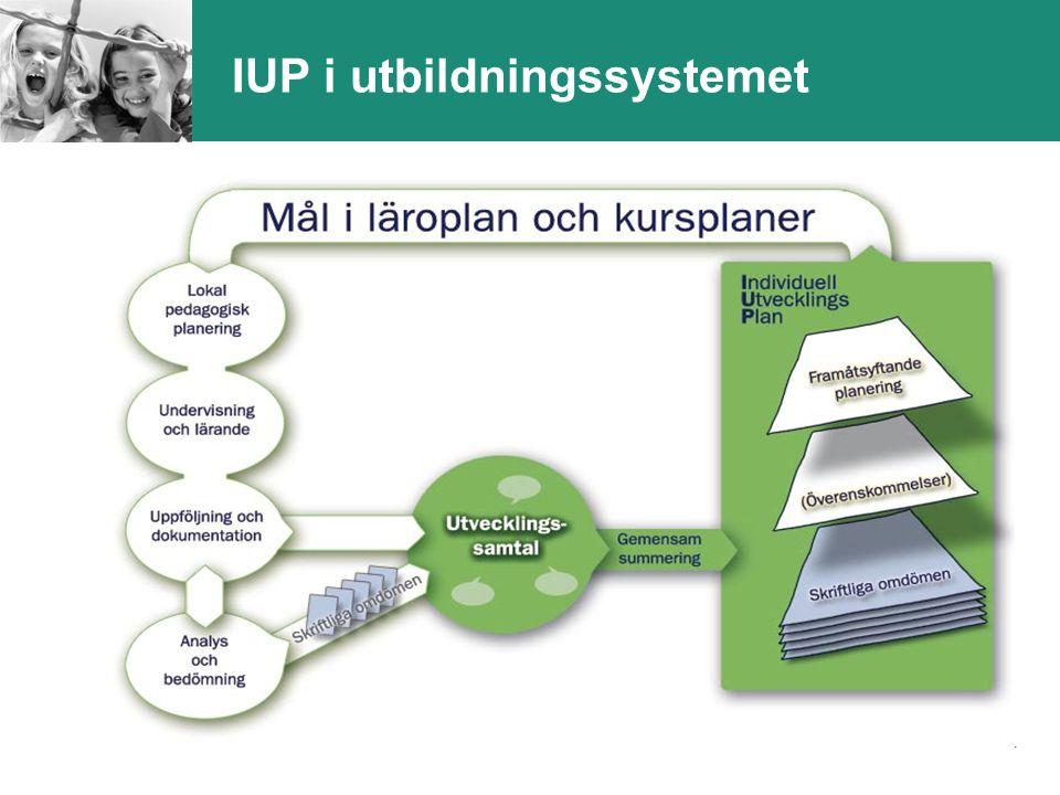 13 IUP i utbildningssystemet
