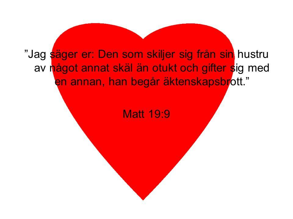 """""""Jag säger er: Den som skiljer sig från sin hustru av något annat skäl än otukt och gifter sig med en annan, han begår äktenskapsbrott."""" Matt 19:9"""