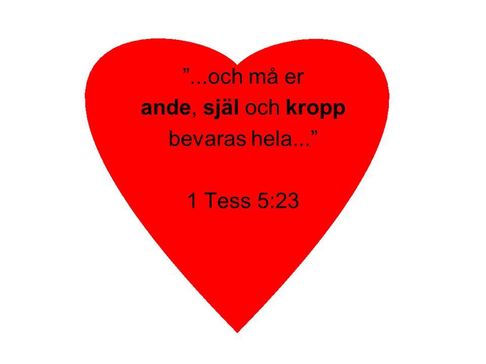 """""""...och må er ande, själ och kropp bevaras hela..."""" 1 Tess 5:23"""
