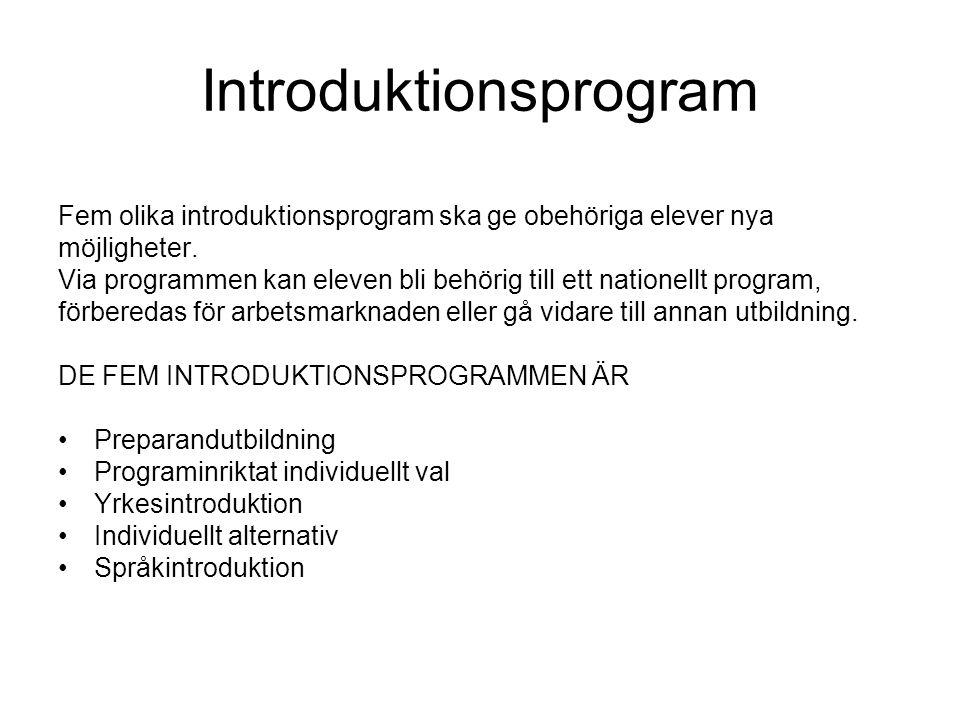 Introduktionsprogram Fem olika introduktionsprogram ska ge obehöriga elever nya möjligheter. Via programmen kan eleven bli behörig till ett nationellt