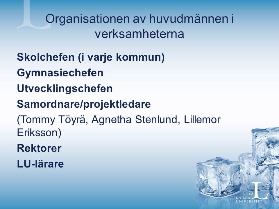 Organisationen av huvudmännen i verksamheterna Skolchefen (i varje kommun) Gymnasiechefen Utvecklingschefen Samordnare/projektledare (Tommy Töyrä, Agnetha Stenlund, Lillemor Eriksson) Rektorer LU-lärare